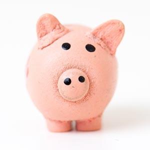 Geld sparen beim Gartenhaus Kauf
